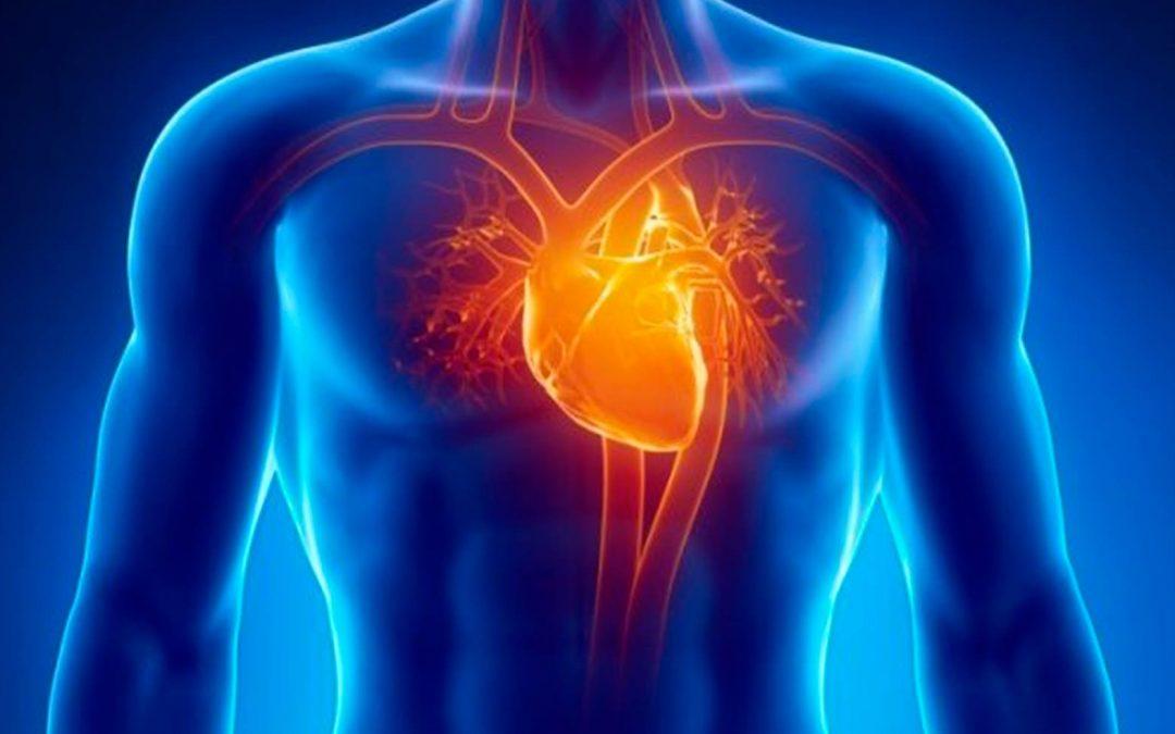 Enfermedad cardiovascular y cáncer