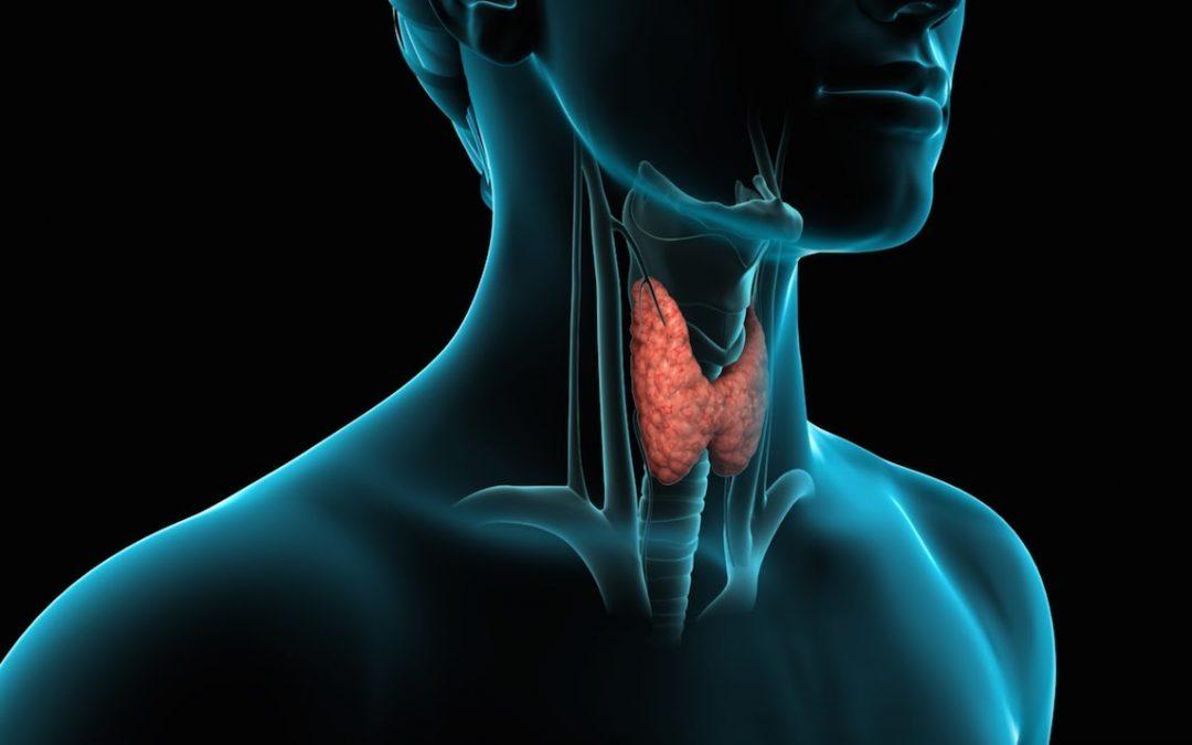 Enfermedad Nodular Tiroidea